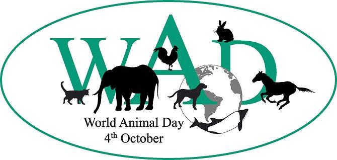 День захисту тварин – оригінальні привітання 1