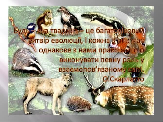 День захисту тварин – оригінальні привітання 3