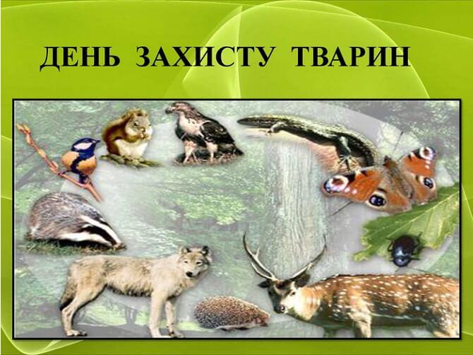 День захисту тварин – оригінальні привітання 6