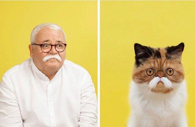 А у вас так же? Фотограф изобразил, насколько похожи кошки и их хозяева 1