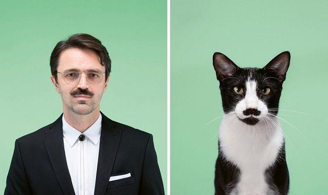 А у вас так же? Фотограф изобразил, насколько похожи кошки и их хозяева 6