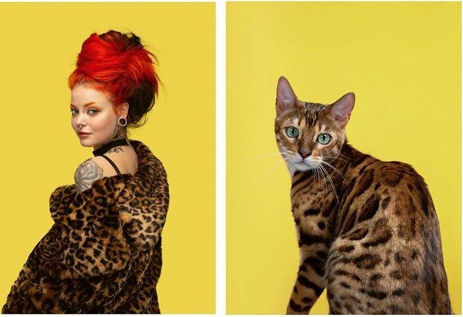 А у вас так же? Фотограф изобразил, насколько похожи кошки и их хозяева 7