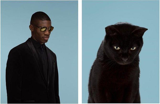 А у вас так же? Фотограф изобразил, насколько похожи кошки и их хозяева 8