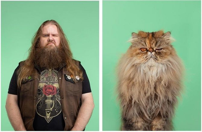 А у вас так же? Фотограф изобразил, насколько похожи кошки и их хозяева 9