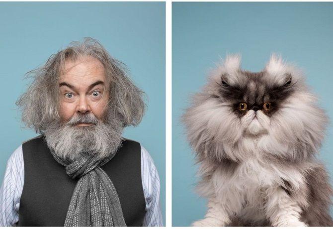 А у вас так же? Фотограф изобразил, насколько похожи кошки и их хозяева 10