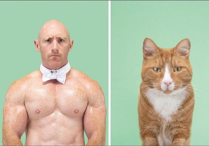 А у вас так же? Фотограф изобразил, насколько похожи кошки и их хозяева 11