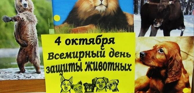 День защиты животных – оригинальные поздравления 4