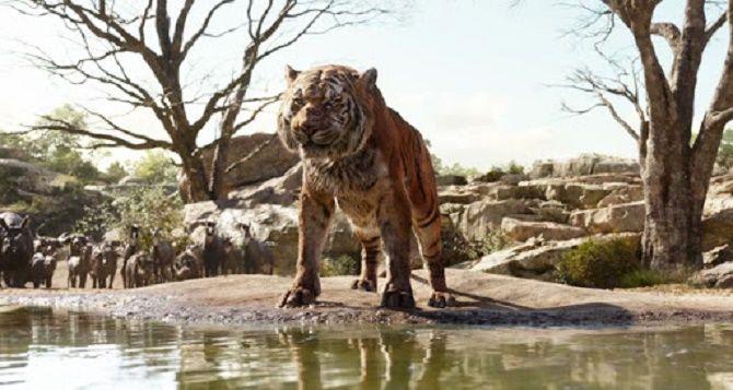 Смугасті хижаки: кращі фільми про тигрів 3