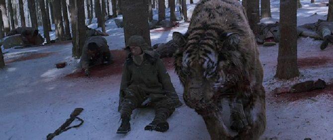 Полосатые хищники: лучшие фильмы о тиграх 7