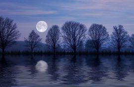 Бобровий Місяць: що варто зробити на Повню у листопаді 2020