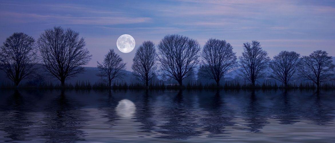 Бобровая Луна: что стоит сделать в Полнолуние в ноябре 2020
