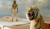 Полосатые хищники: лучшие фильмы о тиграх