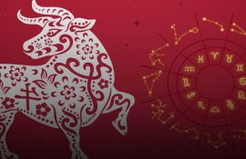 Horoscope for 2021 for all zodiac signs – who will have a good deal of luck?