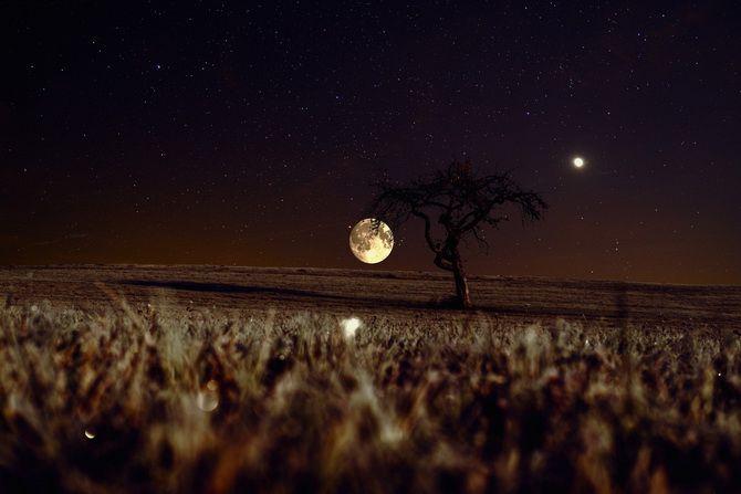 Бобровая Луна: что стоит сделать в Полнолуние в ноябре 2020 3