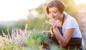 Аромакологія або Як досягти емоційного добробуту через аромати