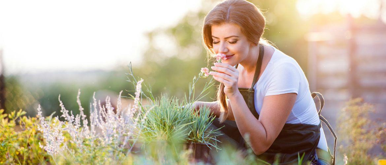 Аромакология или Как достичь эмоционального благополучия с помощью ароматов