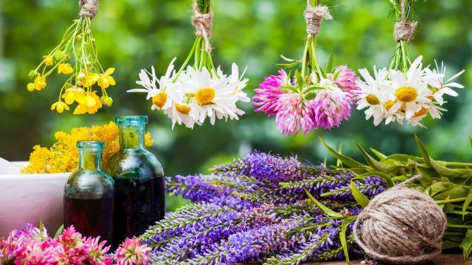 Аромакология или Как достичь эмоционального благополучия с помощью ароматов 1