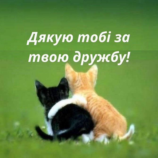 Всесвітній день домашніх тварин – красиві привітання 2