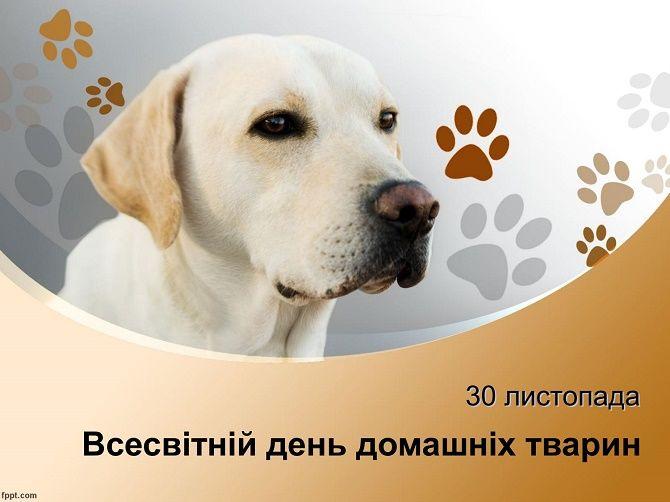 Всесвітній день домашніх тварин – красиві привітання 3