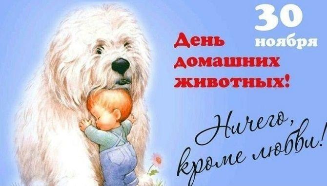 Всемирный день домашних животных – красивые поздравления 2