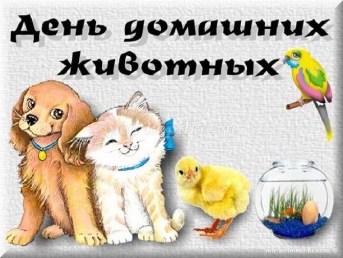 Всемирный день домашних животных – красивые поздравления 3