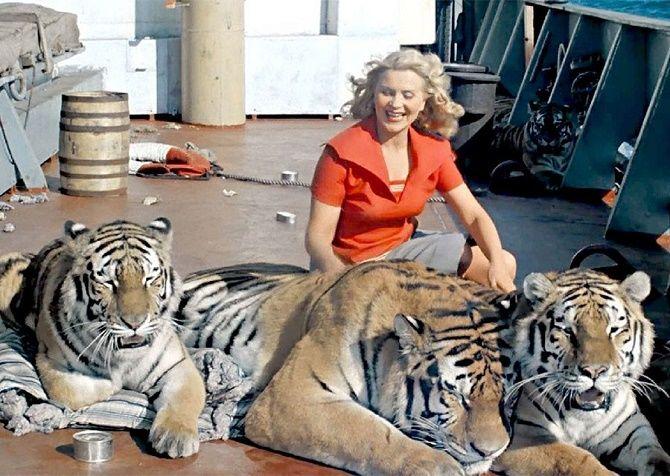 Полосатые хищники: лучшие фильмы о тиграх 6