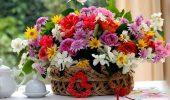 Поздравления с Днем рождения свату: проза, стихи, картинки