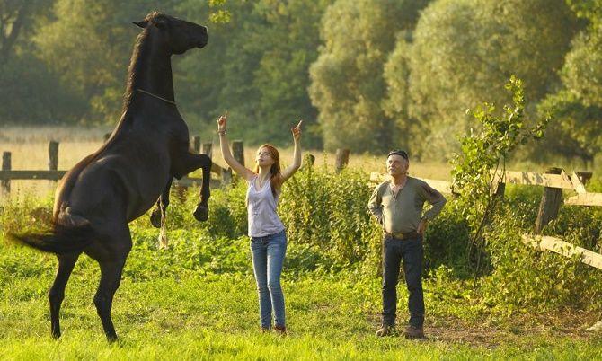 Найцікавіші фільми про сільське життя 1
