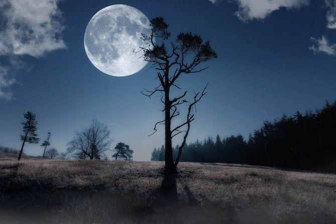 Полнолуние в январе 2021 года – что нам готовит Луна Волка 1