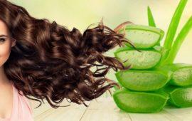 Волшебное средство для ухода за волосами: лучшие маски с алоэ вера