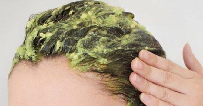 Оздоровлення волосся за допомогою хмелю: кращі рецепти, поради та рекомендації 7