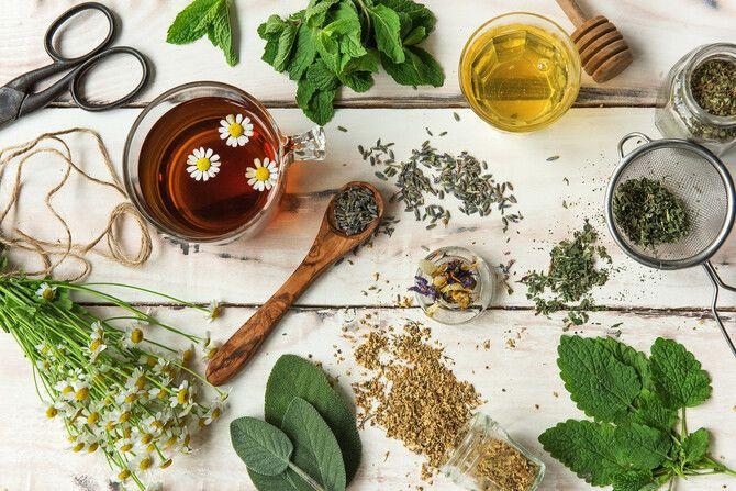 Чашка крепкого здоровья: самые полезные чаи с травами 3