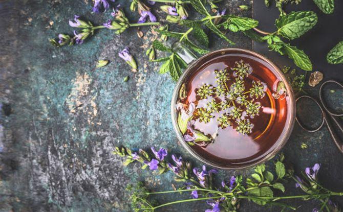 Чашка крепкого здоровья: самые полезные чаи с травами 5
