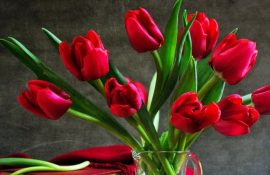 Поздравления с 8 марта для женщин и девушек в стихах, открытках и прозе