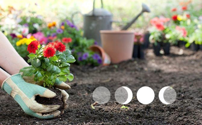 Лунный календарь 2021 на апрель для сада и дома 2