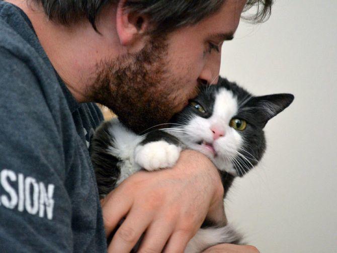 10 главных кошачьих страхов 5