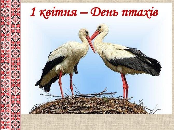 Всесвітній день птахів: красиві привітання 1