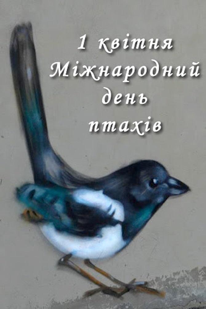 Всесвітній день птахів: красиві привітання 2