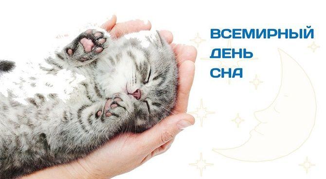 Международный день сна: яркие и оригинальные поздравления 4