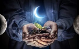 Місячний календар 2021 на квітень для саду та будинку