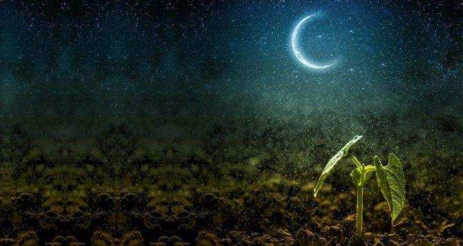 Лунный календарь 2021 на апрель для сада и дома 1