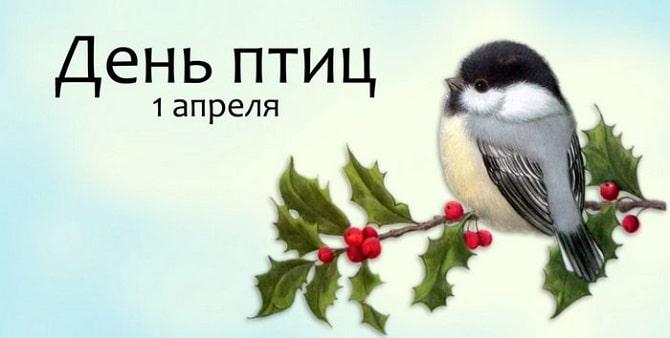 Всемирный день птиц: красивые поздравления 8