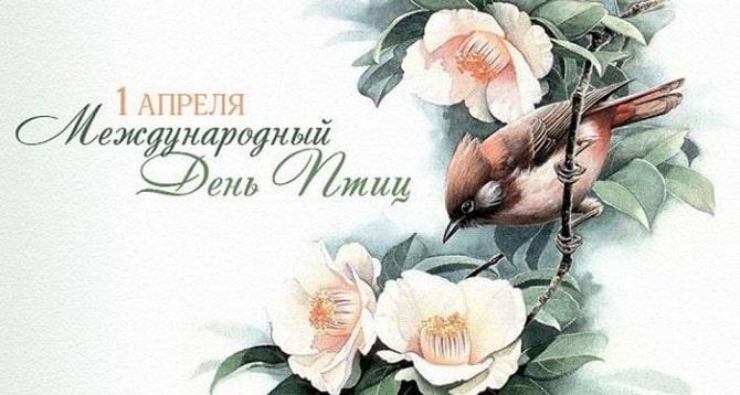 Всемирный день птиц: красивые поздравления 2