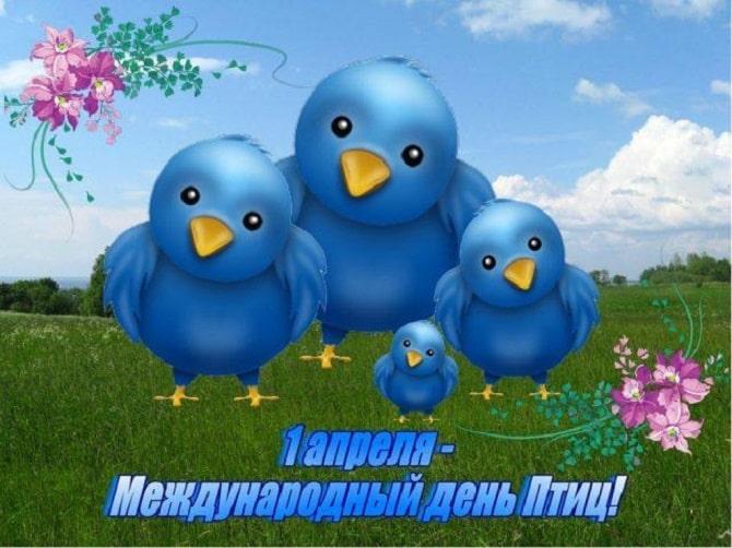 Всемирный день птиц: красивые поздравления 3