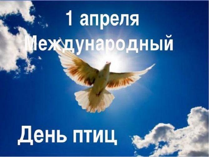 Всемирный день птиц: красивые поздравления 5