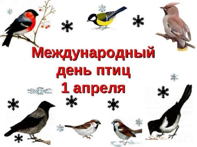 Всемирный день птиц: красивые поздравления 7