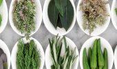 8 потужних спецій-детоксикаторів, які допоможуть очистити організм