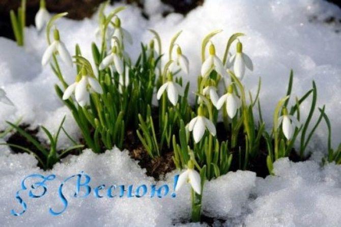 Прикольні привітання з Першим днем весни 5
