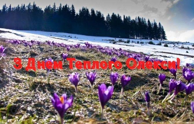 Теплий Олекса 2021: красиві привітання зі святом 4