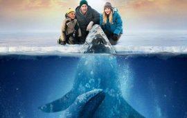 Топ-5 лучших фильмов про китов